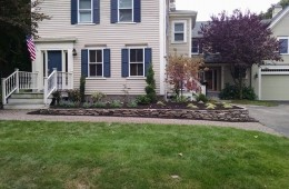 Plant Installation with Stone Wall – Lynnfield, MA